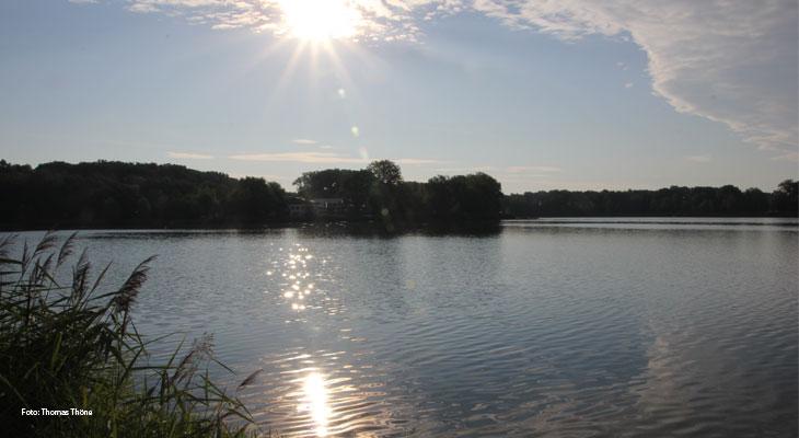 Endlich handeln – den Baggersee schützen - Mit Kommentar